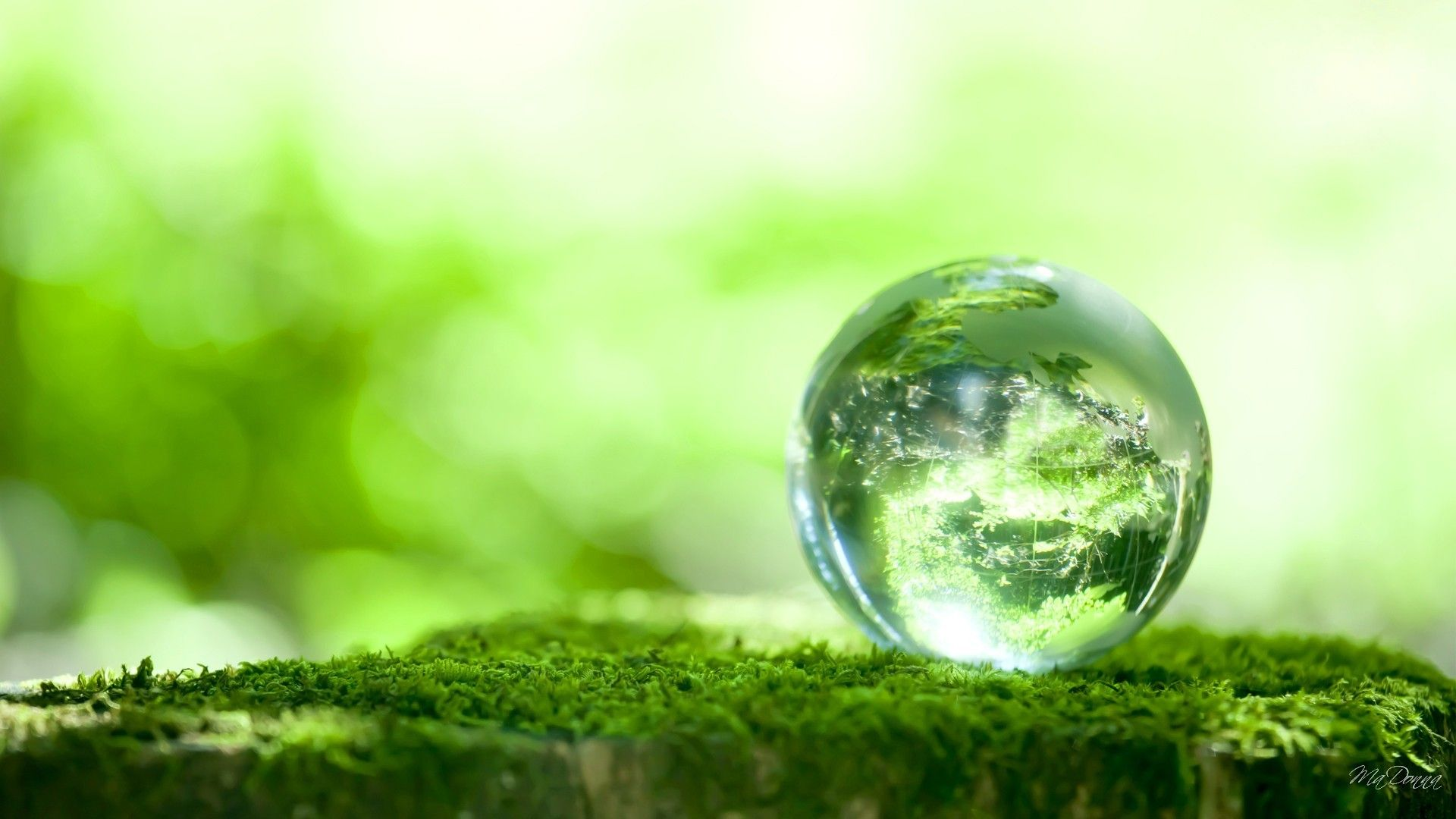 Cluster-Têxtil-Conference | Brokerage Event Green Growth and Circular Economy Thinking